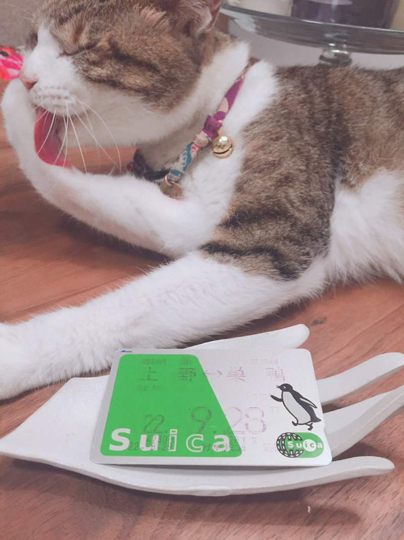 Suica Charge1