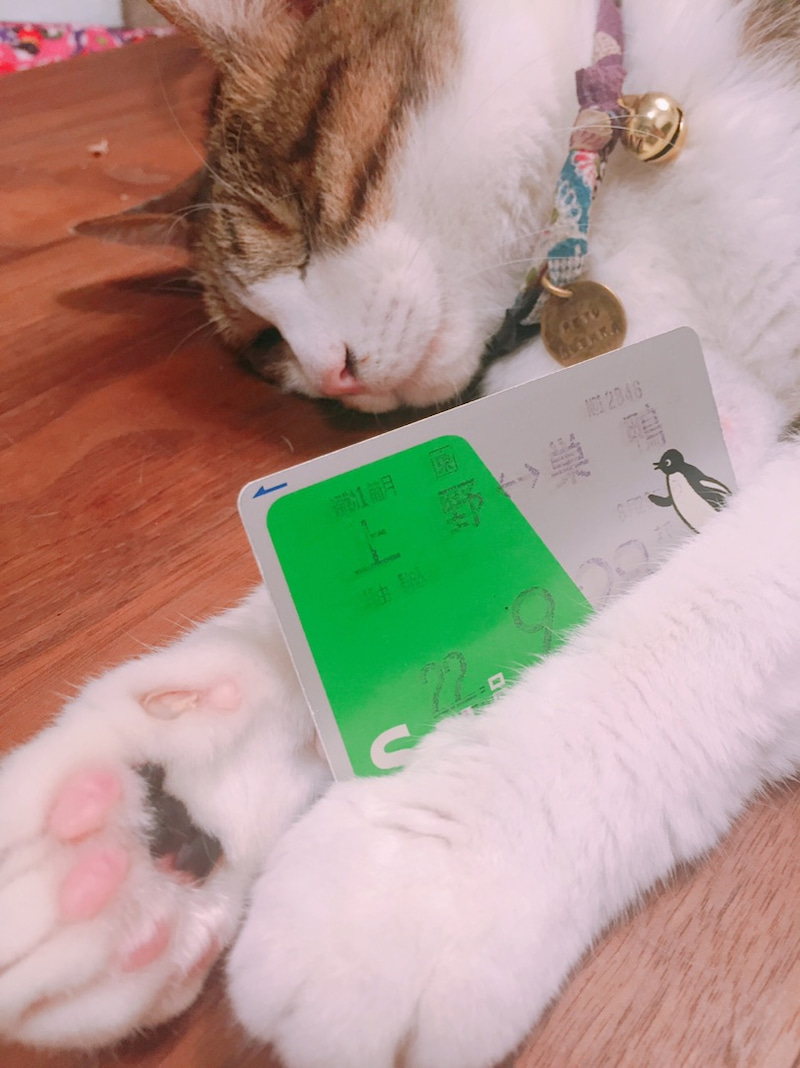 Suica Charge4