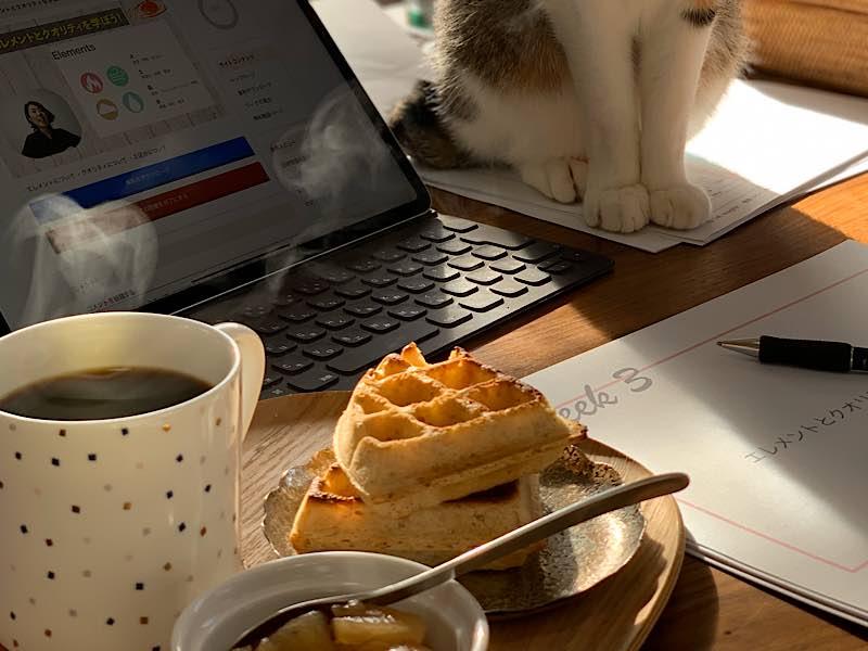 ワッフルとパソコンと猫